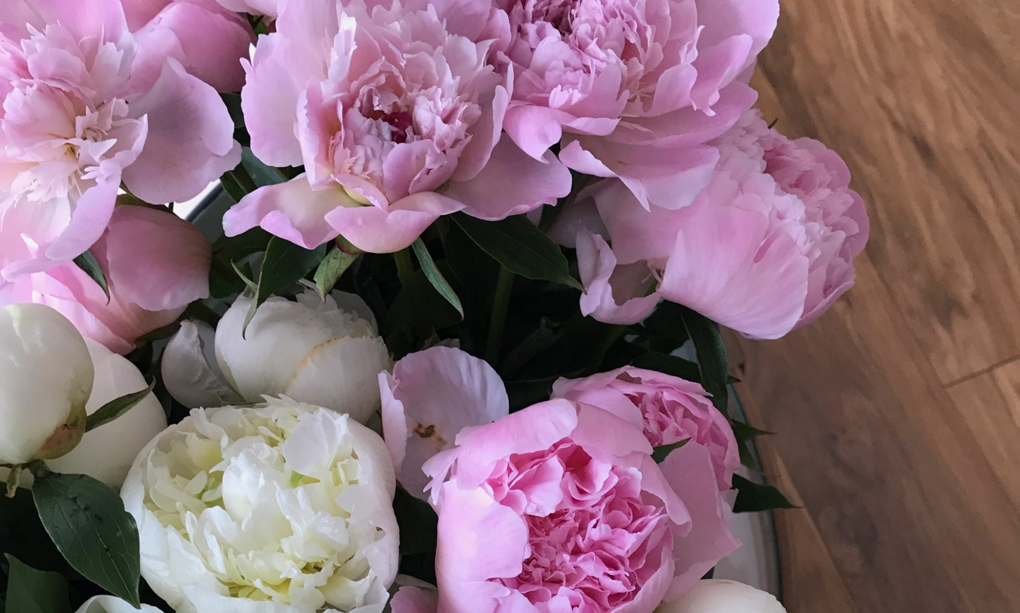 PEONIES, POMPOMS AND PLANES